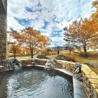 【秋冬旅セール】温泉クチコミ4.6の宿★ワンランクアップの会席料理竹コースと30品バイキング
