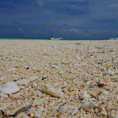 さき楽【はての浜ツアー×早期得割60】キラメク青い海と空★極上の楽園!無人島を満喫(朝食付)