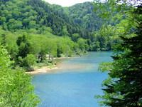 「春得」源泉掛け流しのにごり湯温泉と志賀高原ハイキングプラン