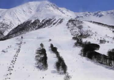 田沢湖高原温泉 どんぐり山荘 image