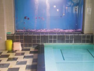 温泉を満喫!貸切露天風呂も24時間入浴OK!チェックインの遅い方も安心素泊りプラン!【お先でスノ。】