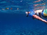 充実の海遊びプラン シュノーケリング・磯釣り・体験ダイビング