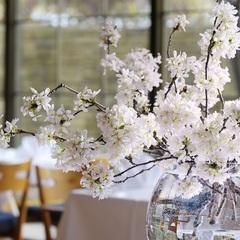 【早割28】【期間限定】春のフレンチ桜ディナーを楽しむ(夕朝食付)