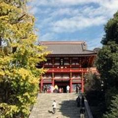 鎌倉湘南でシンプルステイ。(食事なし)