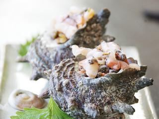 【【満足Standard】】天然もの地魚直接買付け!健康食な地魚南欧フルコース