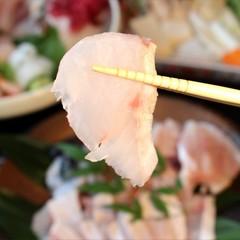 今年もやります!【冬季限定】高級魚クエと南紀の地魚5点盛を堪能!お気軽プラン♪