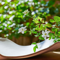 【早割60】《ポイント3倍》美術館のような花の宿で、金泉・銀泉と季節の料理を味わう