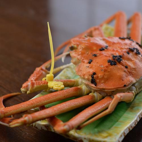 蟹食べ納め!≪越前蟹2人で1杯付+お魚料理≫贅沢!蟹も魚も満喫!★部屋食♪