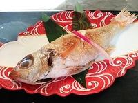★恋人の聖地鵜の浜温泉★4大味覚食べつくし<のどぐろ・あわび・カニ・舟盛り付>