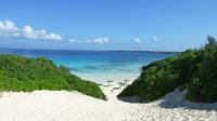 南の島をご家族やグループで楽しむ!ファミリーやお友達同士にオススメ★スタンダードプラン(素泊まり)
