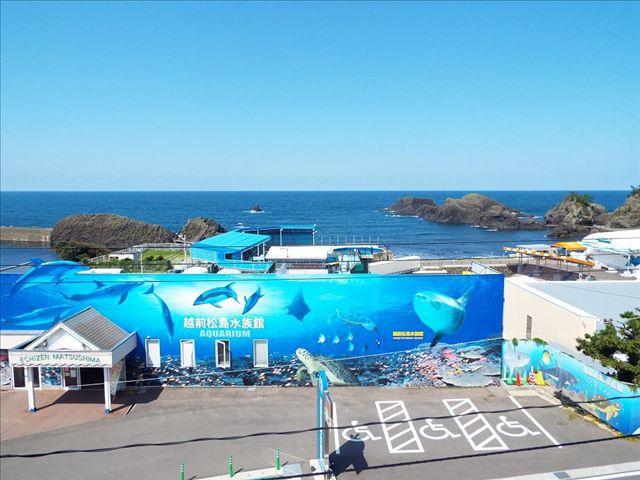 ◆【歩いて1分】越前松島水族館の入場券付き宿泊プラン