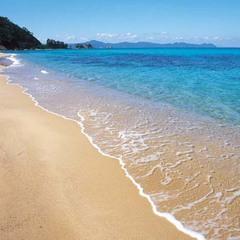 【夏休み限定】海はすぐ近く!海水浴プラン♪夕食は地魚会席料理を満喫[1泊2食付]現金特価