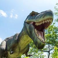 キミも恐竜博士!≪恐竜三昧≫特別展&発掘体験&ディノパーク付恐竜王国満喫プラン【1泊2食】