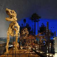 【お車で約10分★1泊2食】お子様歓迎♪恐竜博物館の常設展チケット付き♪