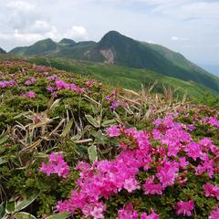 【くじゅう登山応援】特典付♪久住高原の大自然を体感プラン