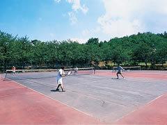 公式テニスコート2面