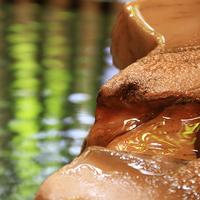 【1泊朝食】濃厚なざる豆腐に釜焚きのホクホク白ご飯★旅館の朝食で1日のスタートを★