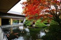 自分へのご褒美に…ちょっとの贅沢♪約6,000坪の日本庭園と優雅な空間をひとり占め!一人旅プラン♪