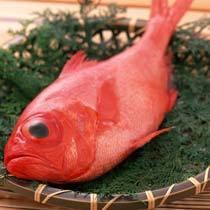 【冬得】近海産・日戻り極上金目鯛しゃぶしゃぶプラン!【料理自慢】