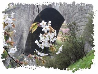 支配人のフォトアトリエNO:021 「桜咲く通潤橋」  支配人のフォトアトリエNO:021 「桜