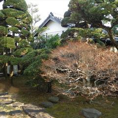◆2人旅◆ご夫婦やカップルで…庭園ビューの和室でのんびり♪