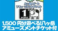 【八ヶ岳アミューズメントチケット】