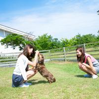 コテージ・ペット(犬)同伴OK(禁煙)(棟貸し)