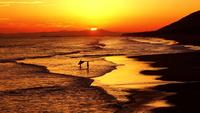 【3泊6食滞在】伊良湖でゆったり滞在プラン 〜お食事はプレミアムビュッフェ〜