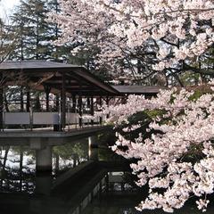 本館【庭園の桜と旬の懐石】春満喫プラン 〜開花に合わせて日にち変更可〜
