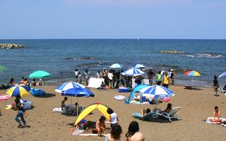 【11時チェックアウトOK】★素泊まり★海まで0分!海釣りファンも大歓迎♪