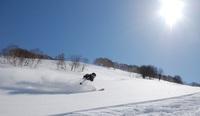 春スキー!格安素泊りプラン!
