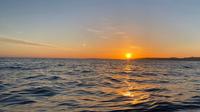 【鯛の浦サンセットクルーズ×鮑会席】海一面をオレンジに染める夕日を船上から眺めよう〜遊覧船周遊〜