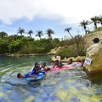 みんなで楽しめる露天風呂 ジャングルプール滞在中1回利用券付 美しい海辺に佇むリゾートホテル