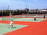 【白子町】テニス!大会!合宿応援プラン!太陽の里入館料が特得割引有り♪