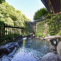 【2食付プラン】高アルカリ・美肌の鉱泉と景観の良いお部屋で癒しの休日