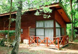4月28日29日限定!森のガーデンパーティー宿泊プラン