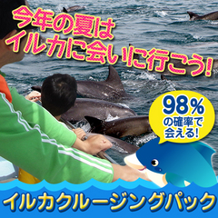 ☆天草の野生のバンドウイルカに会いに行こう!【イルカクルージングパック】