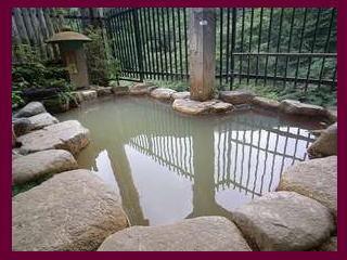 【1泊2食スタンダード】日本一の個性派宿★田舎料理&300年前からの源泉掛け流し天然温泉でのんびり♪
