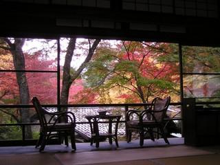 *本館2階「桜」