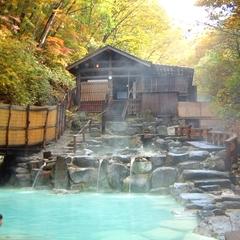 【ひとり旅★お手伝い】思い立ったら♪ ひとり旅!温泉でのんびりと〜 生ビール&温泉特典付!