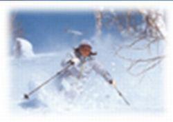 【冬得&すべっ得・添い寝無料】スキーリフト券もお得!スキー&冬旬味覚プラン♪