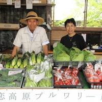 【直前予約OK】嬬恋・北軽井沢の観光に、散策に、時間を気にせず自由な旅を満喫♪【1泊素泊まり】