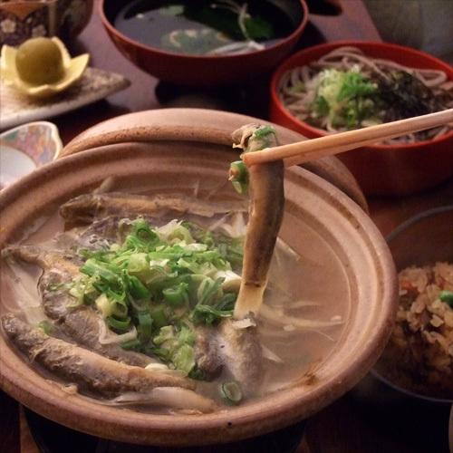 【安来名物★どじょう】実は凄い?!栄養満点の郷土料理を楽しもう♪