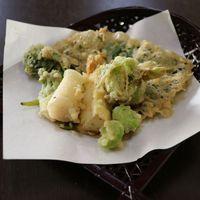 【春限定】山菜の天ぷら付プラン〜7種類の旬の山菜をお楽しみください♪