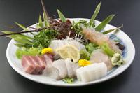 ★伊勢湾で獲れた伊勢海老のお造り付★伊良湖近海でとれた新鮮な旬の魚介類をお腹いっぱいお楽しみください