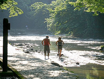 養老渓谷を散策しよう。
