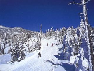 【手ぶらでスキー】レンタル込み!