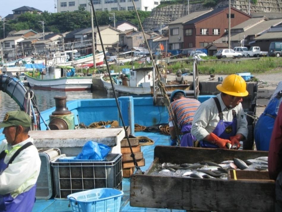 Minsyuku Shikishimaso (Sadogashima) Minsyuku Shikishimaso (Sadogashima)