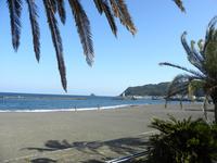 【伊東の海で夏を満喫♪】1泊2食付バイキングプラン!