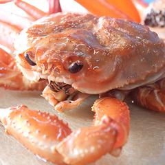 【楽天限定】釜茹でホックホック!紅ズワイ蟹まるごと一杯一人占めプラン....でもこの価格!!